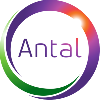 Antal International, Executive Search